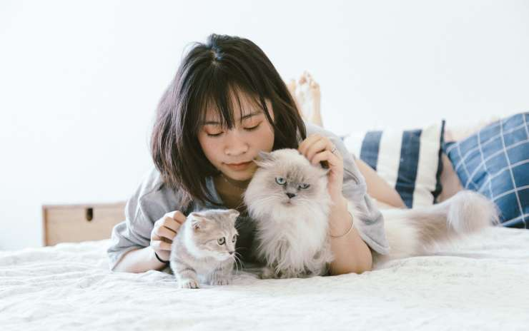 10 Reasons Why You Should Own a Pet