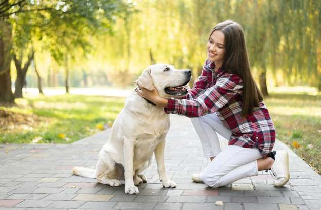 ESA and Health: Here's How You Can Care For Your Emotional Support Animal